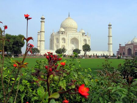 Taj Mahal, Agra, India - 02.08.2010: Taj Mahal in colors. Marble Taj Mahal far. Flowers grow in the foreground. Editorial