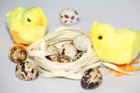 Two yellow chicks near the nest. In the nest are quail eggs. Easter holiday concept.