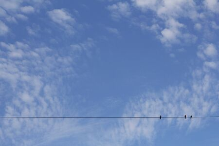 Blue sky with clouds. Texture background. Fluffy clouds texture in blue sky background. Three birds are sitting on a wire. Banco de Imagens