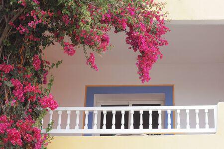 Blumen auf dem Balkon. Romantischer Balkon mit schönen Korbblumen. Standard-Bild
