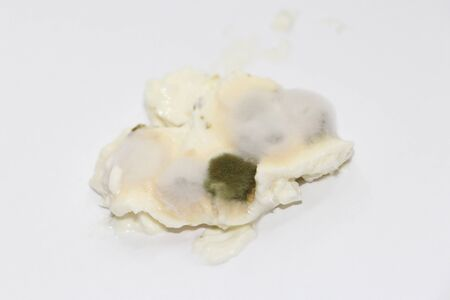 Mold on food. Toxic mildew texture with dark green and white spots. A spoiled product that has been stored for a long time. Stock Photo