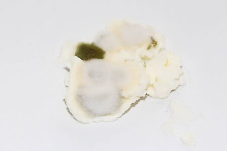 Mold on food. Toxic mildew texture with dark green and white spots. A spoiled product that has been stored for a long time. Stok Fotoğraf