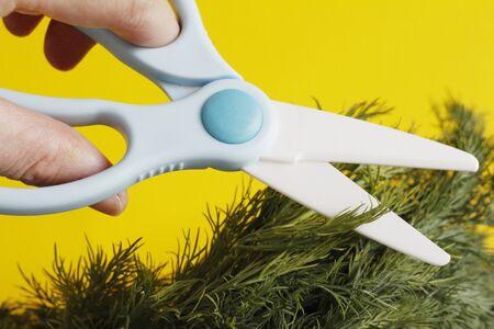 Ceramic scissors. Eco-friendly food slicing. Cooking for children. Cut food with ceramic scissors. Kitchen ceramic scissors. Banque d'images - 138030632