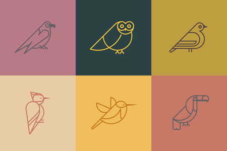 Vector set bird icons. Different birds species like: owl, toucan, woodpeckers, hummingbirds, hawk, dove. Trendy linear style icon.