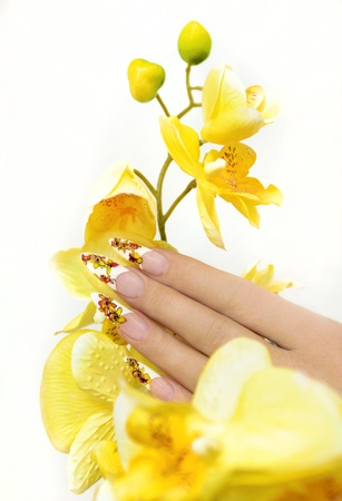 Long French manicure with yellow orchids on a white background