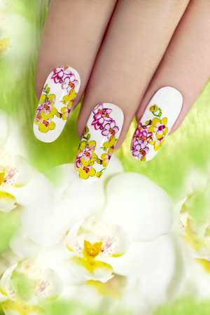 body painting: Nail with a pattern of colored orchids in the oval-shaped nails