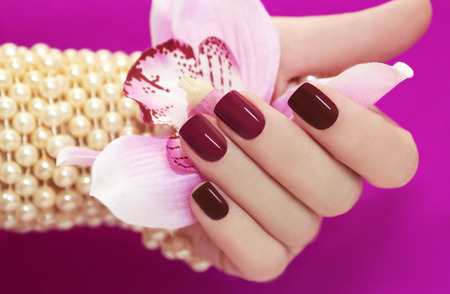 Two-tone manicure from light and dark cherry-red Polish on women s hand  photo