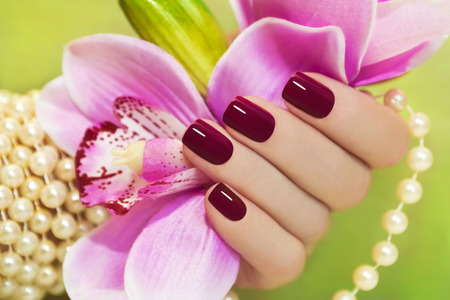Maroon manicure on female hand with Orchid and a pearl bracelet