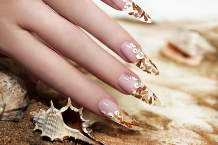 Nail design with brown and white these little shells inside gel nails on the background of shells and sand  photo