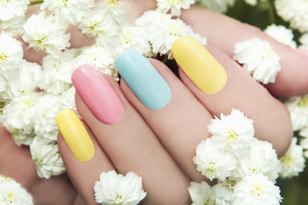 Pastel manicure on female hand with flower Hipsofilas