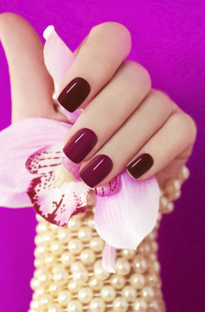 Two-tone manicure from light and dark cherry-red Polish on women\'s hand.