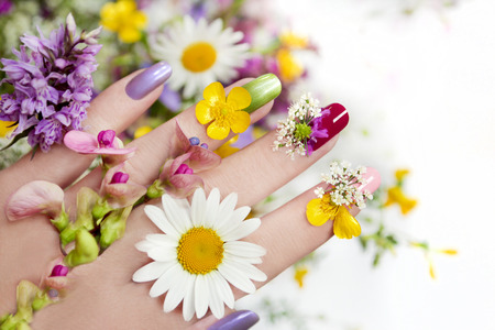 Nail design with flowers and colored lacquer on a woman39s hand.