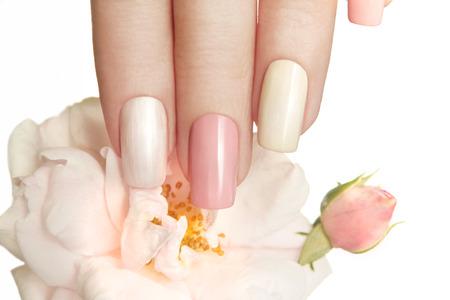 colores pastel: Manicuras pastel con diferentes colores brillantes en sus u�as con una rosa sobre un fondo blanco. Foto de archivo