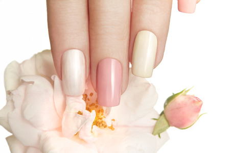 Pastel manicures with different bright colors on your nails with a rose on a white background. Archivio Fotografico