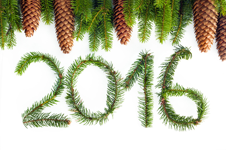 0 1 year: The symbol of the future 2016 New year from pine branches with cones.