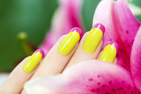 french manicure: Colored French manicure with a Lily in her hand. Stock Photo