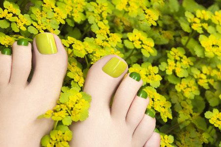feet: Colorful summer pedicure in flowers plants yellow and green.