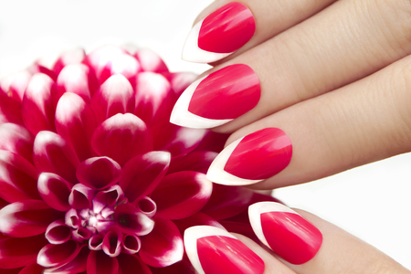 Red French manicure with dahlias. Imagens