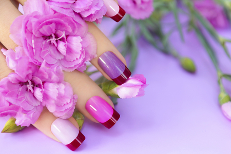 Colorful French manicure in lilac pink shades of nail Polish on the woman. 스톡 콘텐츠
