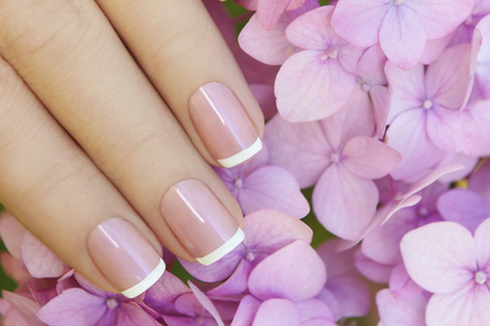 purple flower: Short pink lilac French manicure with hydrangea.