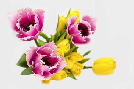 arreglo floral: Arreglo floral del amarillo y aguja-como tulipanes rosados ??en el ramo gris del background.Spring.