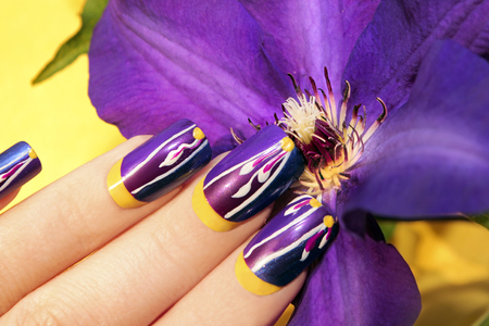 Summer Lilac Yellow Nail Design For Long Nails Square Female Stock