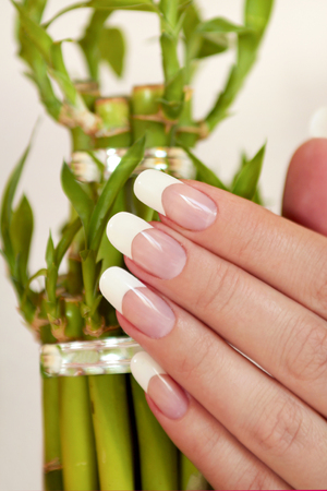 Oval long French manicure on female hand with bamboo closeup.