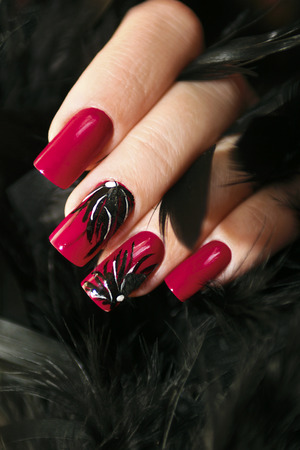 Long Red Nails With Design Of Black Feathers On Female Hand Close