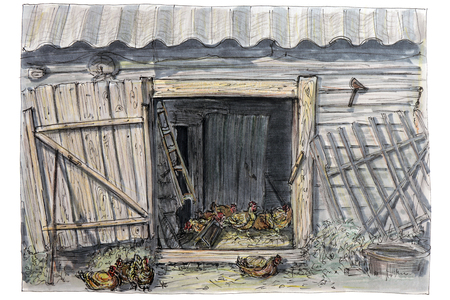Sketch of a felt-tip pen. Country life. Poultry production of chickens.