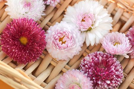 Small flowers on a wicker object. Flower background.
