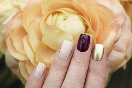 Multicolored short manicure with a dark golden burgundy and pastel light nail polish. Nail art summer spring collection. Stok Fotoğraf