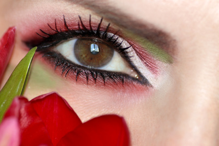Makeup brown eyes with red eyes and green eyeshadow close-up with Tulip. Stok Fotoğraf