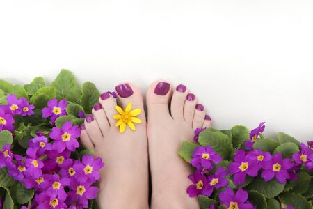 Beautiful purple pedicure on women's feet with flowers on a white background.
