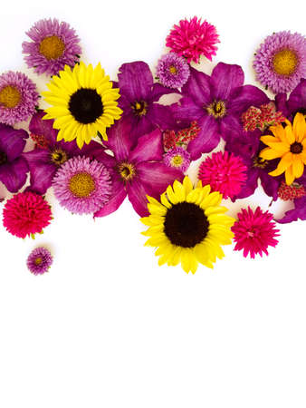 Beautiful composition of astronomy flowers, clematis and sunflowers on a white background.