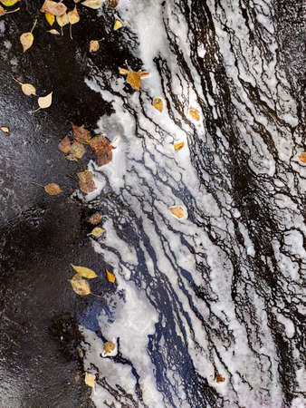 Abstract blur of water with foam along the road surface with fallen leaves in autumn. Фото со стока