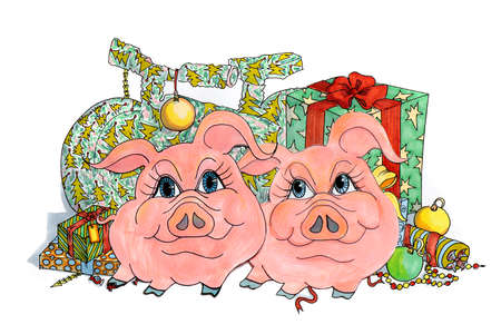 Drawing of two funny pigs on a background of gifts and surprises on a white background isolated.