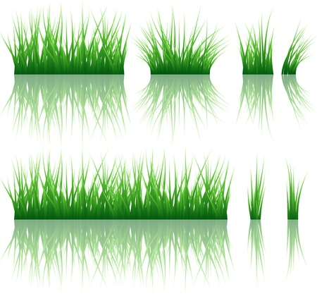 sedge: Grass banner