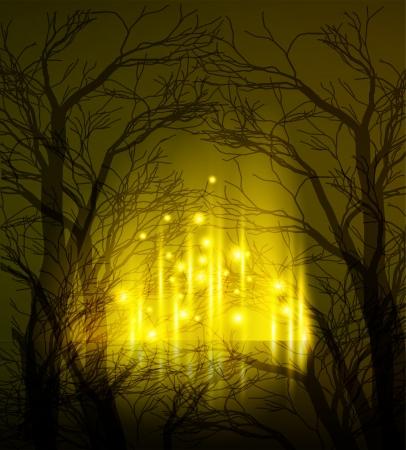 misty forest: Resumen de antecedentes