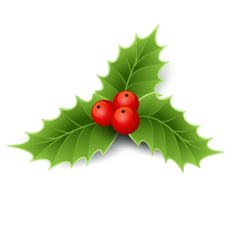 holly leaves: Christmas decoration