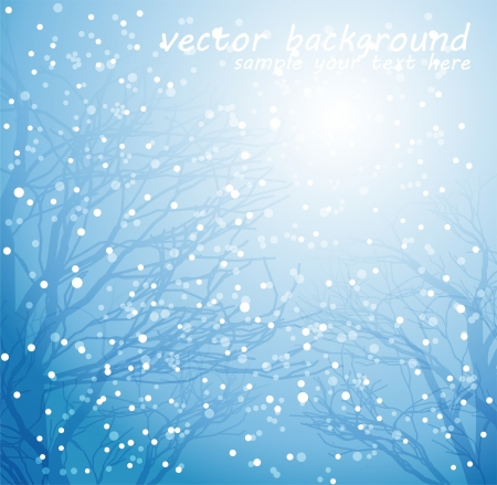winter tree silhouette: Winter background
