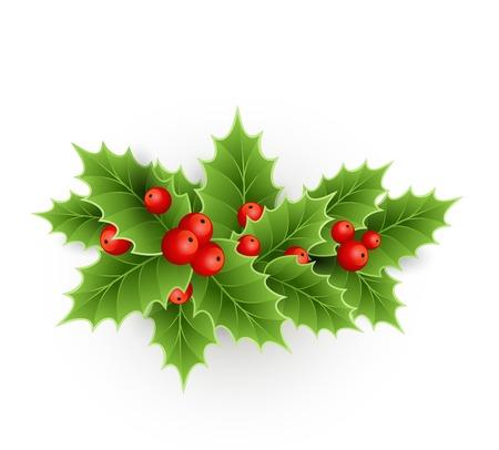 Vector Kerst hulst met bessen. EPS 10 Stock Illustratie