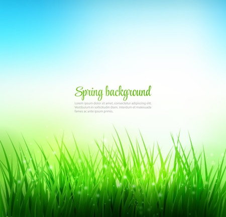 sky background: Natural green grass background. Vector illustration. EPS 10