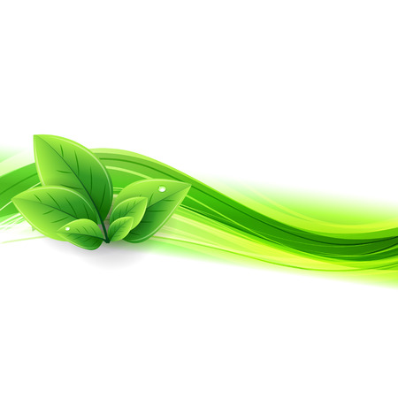 Vector Abstract nature background with green leaves  イラスト・ベクター素材