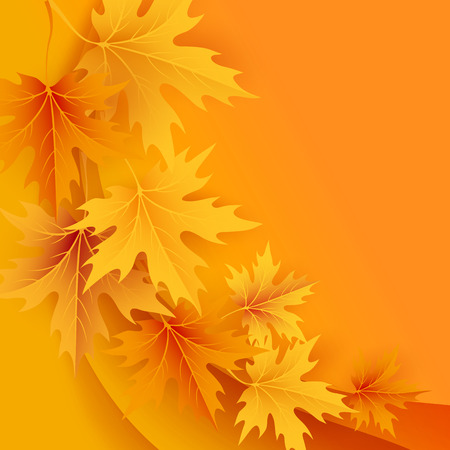 design background: Autumn maples falling leaves background. Vector illustration.