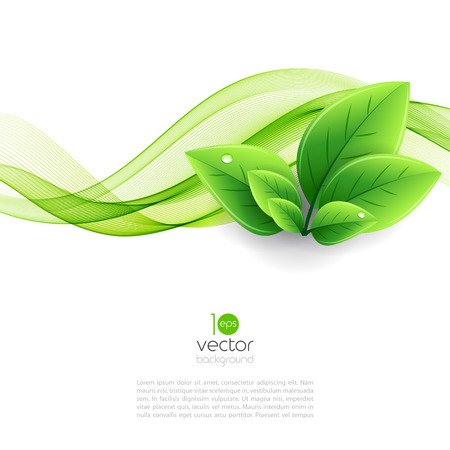 leaf water drop: Vector eco leaves and green wave. Abstract ecology background