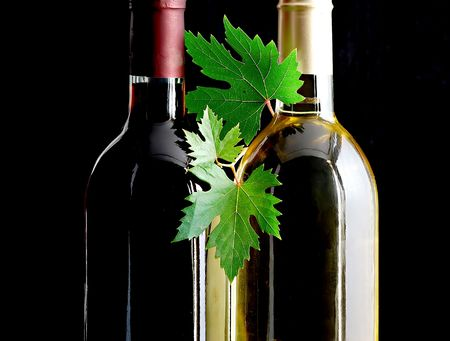 wines: bottles of red and white wines with grape leafs