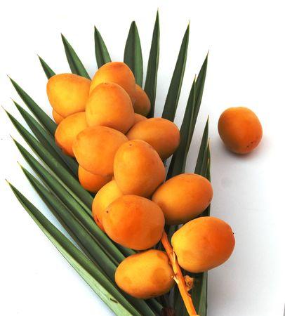 dactylifera: A bunch of dates on a palm leaf