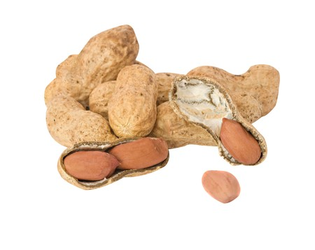 earthnuts: Peanuts isolated on white background Stock Photo