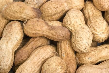 arachis: Pile of peanuts