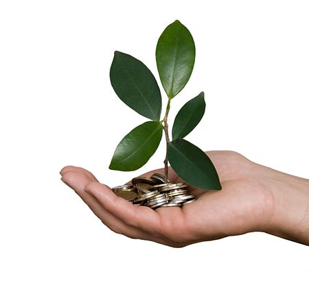 Palm with a plant growng from pile of coins photo